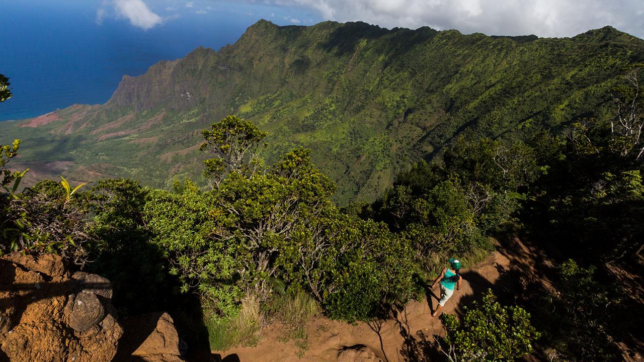 5 Reasons to Travel to Kokee, Kauai
