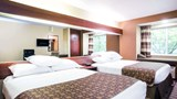 "Microtel Inn & Suites by Wyndham Beckley Room. Images powered by <a href='http://web.iceportal.com'  target=""_blank"">Ice Portal</a>."