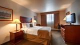 "Best Western Gold Rush Inn Room. Images powered by <a href='http://web.iceportal.com'  target=""_blank"">Ice Portal</a>."
