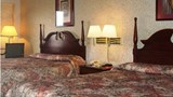 "Scottish Inns Room. Images powered by <a href='http://www.leonardo.com'  target=""_blank"">Leonardo</a>."