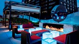 "The Ritz-Carlton, Chicago Restaurant. Images powered by <a href='http://www.leonardo.com'  target=""_blank"">Leonardo</a>."