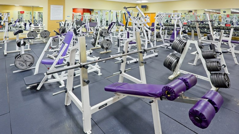 "Holiday Inn Express & Suites Health Club. Images powered by <a href='http://www.leonardo.com'  target=""_blank"">Leonardo</a>."