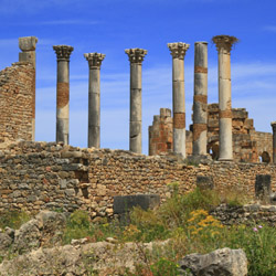 Visit the Roman ruins of Volubilis on this fam trip in Morocco. // © 2015 Thinkstock