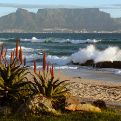 Visit Table Mountain and Cape Town in South Africa. // © 2015 iStock