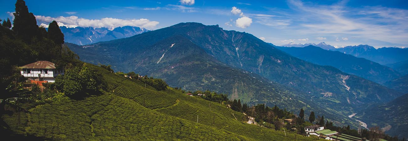 Bhutan and India With Exotic Journeys