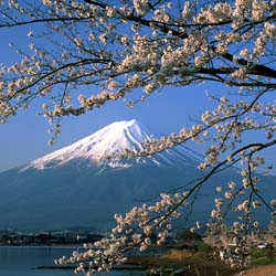 Mount Fuji at springtime // © 2013 Japan National Tourism Organization