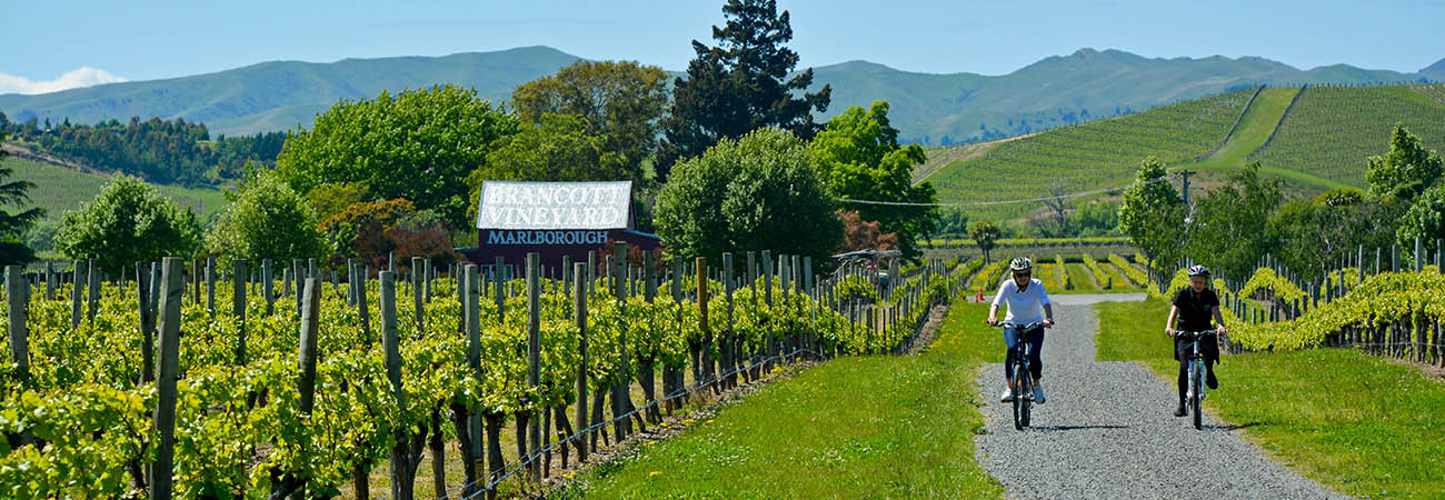 Why New Zealand's Marlborough Wine Region Is Worth a Visit