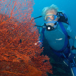 <p>Filmmaker Jean Michel Cousteau has partnered with Stella Travel Services USA to plan a set of exclusive South Pacific trips. // © 2014 Ocean...