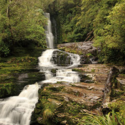 "<p>The Catlins coast in the Clutha region of New Zealand served as a ""Pete's Dragon"" film location. // © 2016 Tourism New Zealand</p><p>Feature image..."