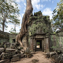 The ruins of Ta Prohm in Cambodia // © 2014 Thinkstock