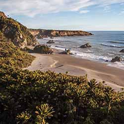 <p>The 10th addition to New Zealand's Great Walks collection is set to open in 2018 on the west coast of New Zealand's South Island. // © 2016 Tourism...