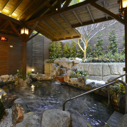 <p>Clients can soak in soothing hot springs. // © 2018 The Gaia Hotel</p><p>Feature image (above): The Gaia Hotel features a four-story library. // ©...