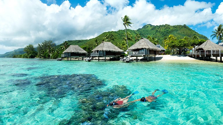 Guests at Hilton Moorea can snorkel right off the private beach.