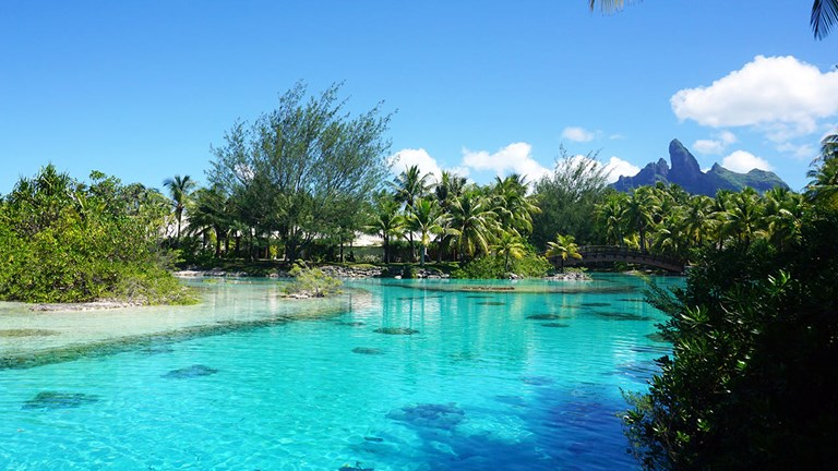 The St. Regis Bora Bora Resort has its own Lagoonarium where guests can swim and snorkel among marine life.