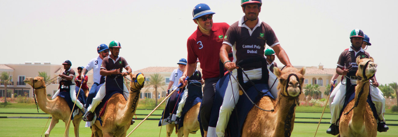 A Look Into Playing Camel Polo in Dubai