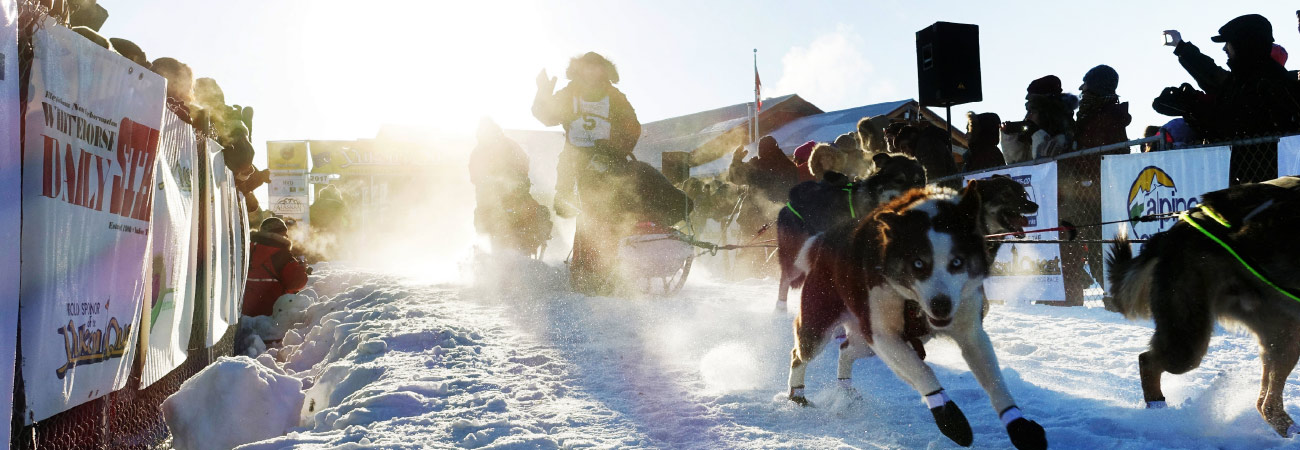 Dogsledding in Yukon, Canada's Far North