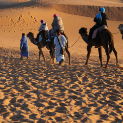 <p>Camel treks through the Sahara are available through many tour operators. // © 2015 Mark Chesnut</p><p>Feature image (above): National Geographic...