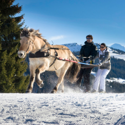 <p>Think of ski joering as horse-drawn skiing. // © 2016 S. Bailly</p><p>Feature image (above): If you want to ski and paraglide at the same time, try...