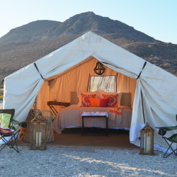 <p>Spacious safari-style tents feature real beds. // © 2017 Todos Santos Eco Adventures</p><p>Feature image (above): Guests can swim with whale sharks...