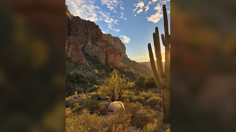 Find cactus, canyons and wildlife in the Superstition Mountains.