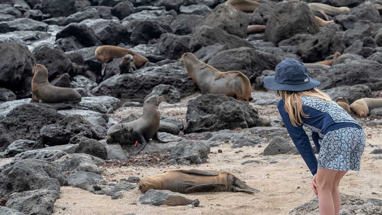3 Unique Animal Encounters in the Galapagos Islands