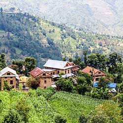 <p>Community Homestay is an initiative of Kathmandu, Nepal-based tour company Royal Mountain Travel. // © 2018 CommunityHomestay.com</p><p>Feature...