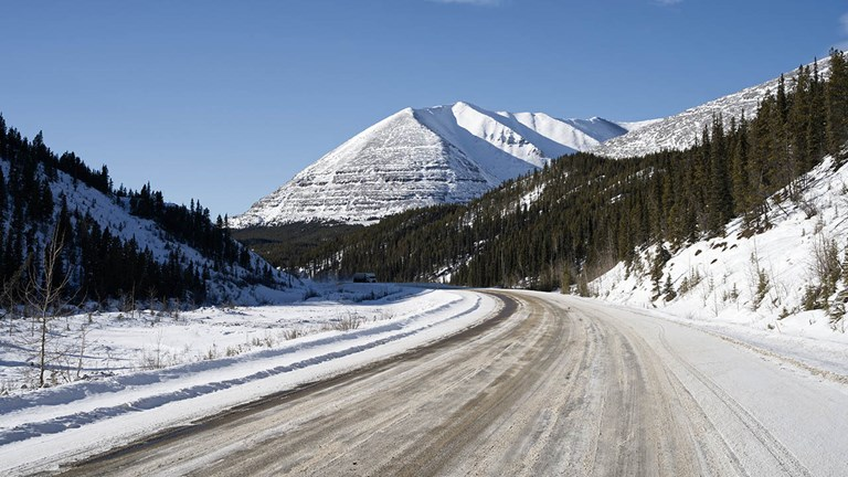 Parts of the Alaska Highway in British Columbia go through the Muskwa-Kechika Management Area, which teems with wildlife.