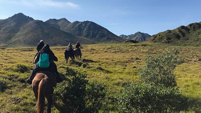 Traversing Canada's Majestic Yukon by Car and Horseback