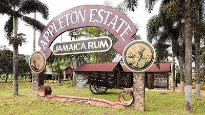 Jamaica's Famed Appleton Estate Reopens After $7.2 Million Refresh
