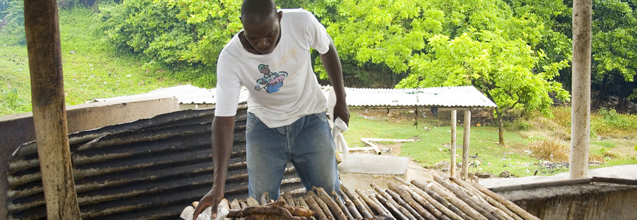 Where to Find the Best Jerk Cooking in Jamaica
