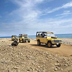 <p>Adventurous guests can explore Aruba via a 4x4 Jeep caravan. // © 2016 Aruba Tourism Authority</p><p>Feature image (above): Flying Fishbone...