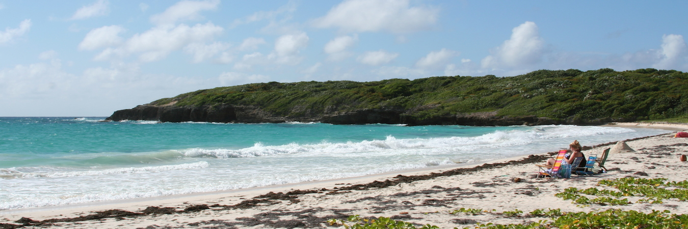 What to Do on Vieques, Puerto Rico