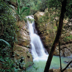 <p>Caption: Approximately 600,000 people visit El Yunque waterfall every year. // © 2014 Puerto Rico Tourism Company</p><p>Feature image (above): El...