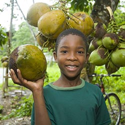 <p>Jamaica tourism officials plan to attract more visitors to the country by increasing offerings in health and wellness, gastronomy and shopping. //...