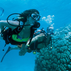 Guests at Sandals and Beaches Resorts in the Caribbean can take advantage of first-class diving instruction. © // 2014 Sandals Resorts International