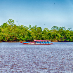 <p>Travelers can take a boat tour along Suriname River. // © 2015 iStock</p><div></div>