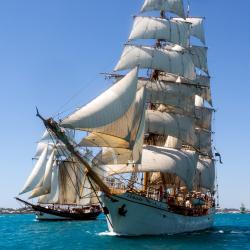 Cruise Travelage West