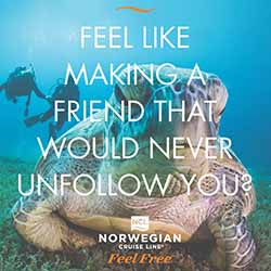 "<p>Norwegian Cruise Line's ""Feel Free"" campaign invites passengers to rid themselves of their busy schedules. // © 2016 Norwegian Cruise..."