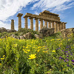 Agents will be able to see Selinunte Archaeological Park during Tours Specialists, Inc.'s five-day tour of Sicily. // © 2017 iStock