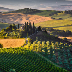 <p>Get a taste of Tuscany's world-famous wine. // © 2015 iStock</p><div></div>