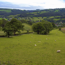 <p>Geufron Hall offers four rooms and scenic views of sheep-dotted pastures. // © 2014 Geufron Hall</p><p>Feature image (above): Situated next to...