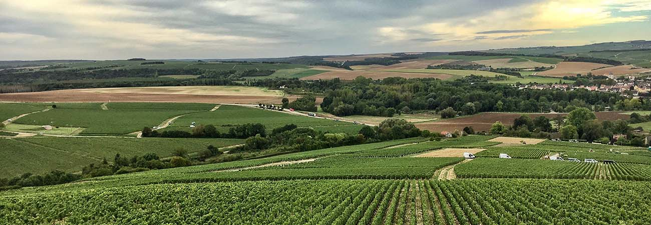 Where to Find Wine and Local Flavor in Chablis, France