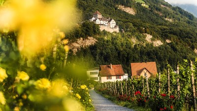 5 Fun Ways to Celebrate Liechtenstein's 300th Birthday