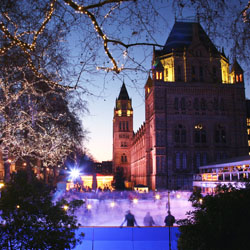 London attractions that get in the Christmas spirit include Trafalgar Square and the Natural History Museum. // © 2013 Thinkstock