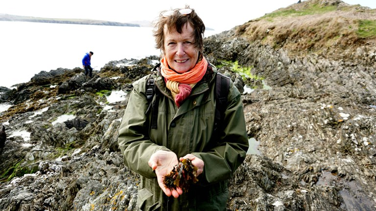 Julia Horton-Mansfield, co-founder of local operator Wild About Pembrokeshire in Wales, holding seaweed
