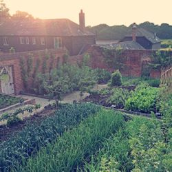 The Pig's new gastronomic hotels will feature fresh produce from on-site gardens. // © 2013 The Pig