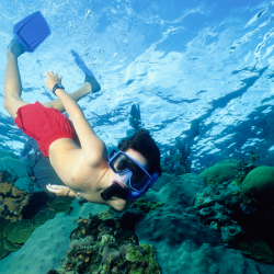 Snorkeling is part of a new tour itinerary in Panama. // © 2015 IStock