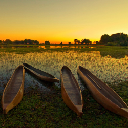 Families can explore the Okavango Delta on the new Botswana itinerary from KE Adventure Travel. // © 2015 iStock