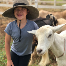 Surfing Goat Dairy is a great option for families on Maui. // © 2018 Surfing Goat Dairy