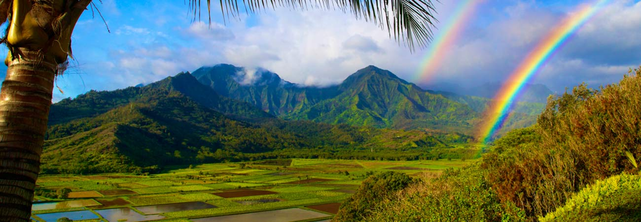Why Travel Agents Should Sell Kauai